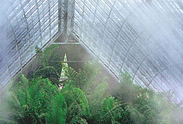 Fog is useful for maintaining the proper microclimate for plants and combating the solar load in glasshouses.